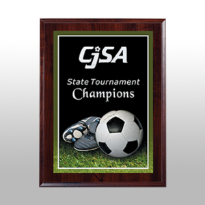 Soccer Sports Award Plaque