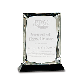 "WLW Award Of Excellence Kanji ""Joe"" Higuchi Engraved on A Black Crystal Base"